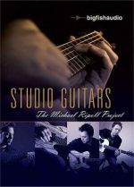 Big Fish Studio Guitars The Michael Ripoll