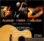 Indiginus Acoustic Guitar Collection (Kontakt)