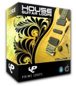 Prime Loops House Guitar Loops