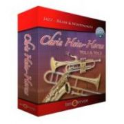 Best Service Chris Hein Horns Vol.1 (VST)
