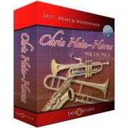 Best Service Chris Hein Horns Vol.2 Sections (VST)