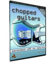 Nine Volt Audio Chopped Guitars