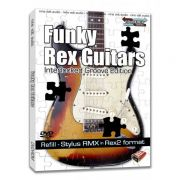 Nine Volt Audio Funky Rex Guitars