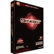 Sample Logiс Synergy (KONTAKT)