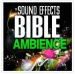 Sound Effects Bible - Ambience (WAV)