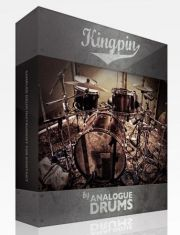 Analogue Drums - Kingpin