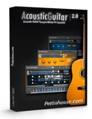 PettinHouse - Acoustic Guitar 2